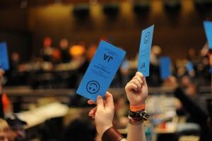 Piraten Abstimmung Parteitag Hessen CC BY SA